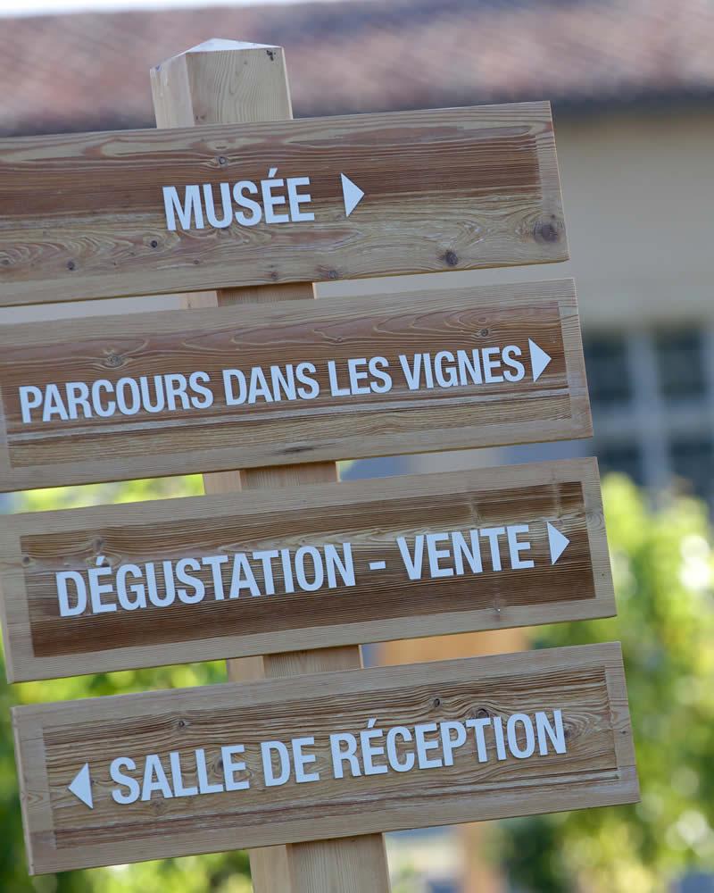 Musée, parcours dans les vignes, dégustation