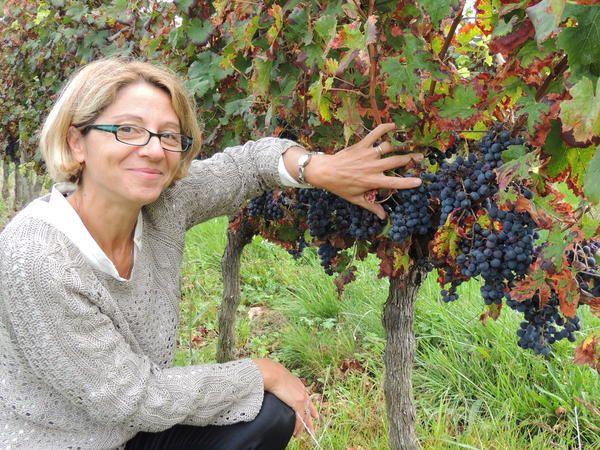 Soirée des Best of Wine Tourism