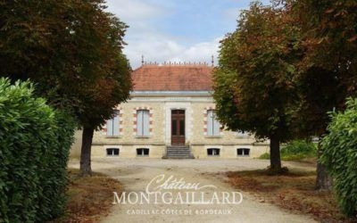 Chateau Montgaillard - François Chollet