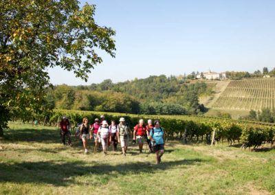BALADE-VENDANGES-maison-des-vins-3
