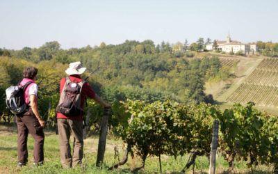 Nous vous proposons des Balades vigneronnes natures authentiques