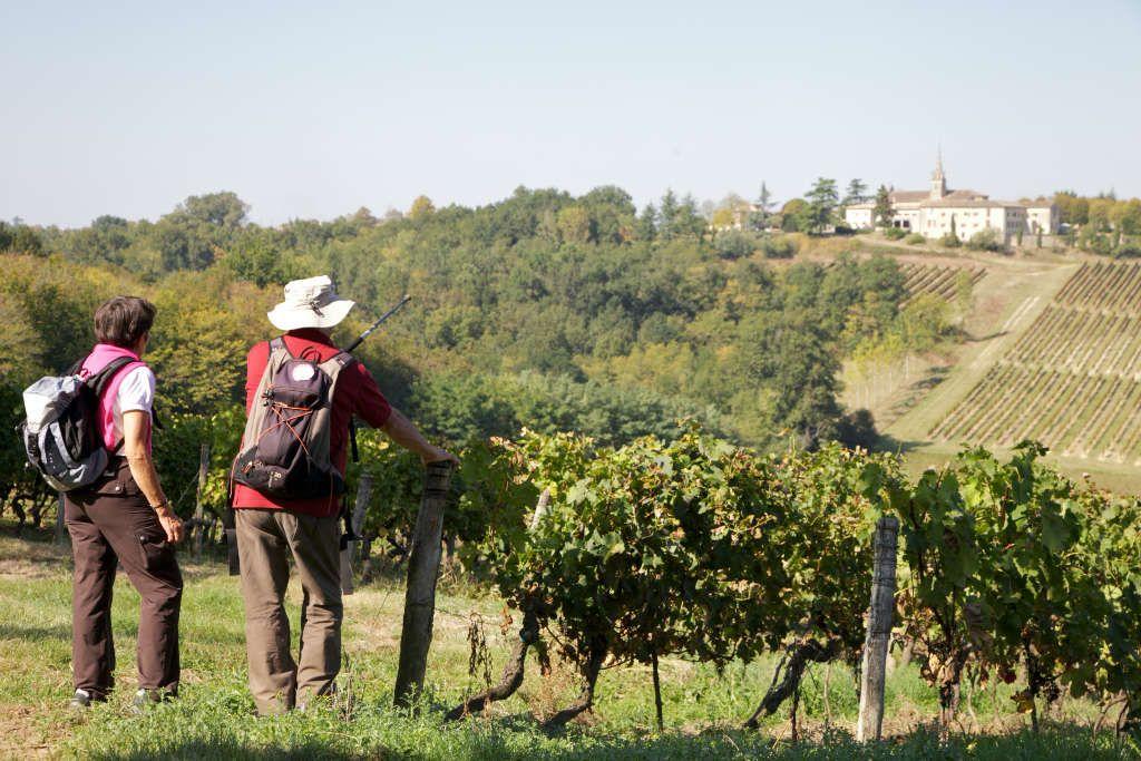 BALADE-VENDANGES-maison-des-vins-2