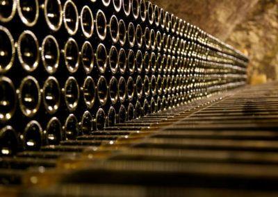 BALADE-VENDANGES-maison-des-vins