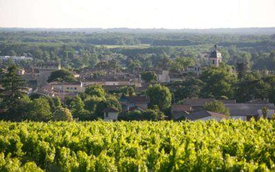 Les certifications environnementales en viticulture