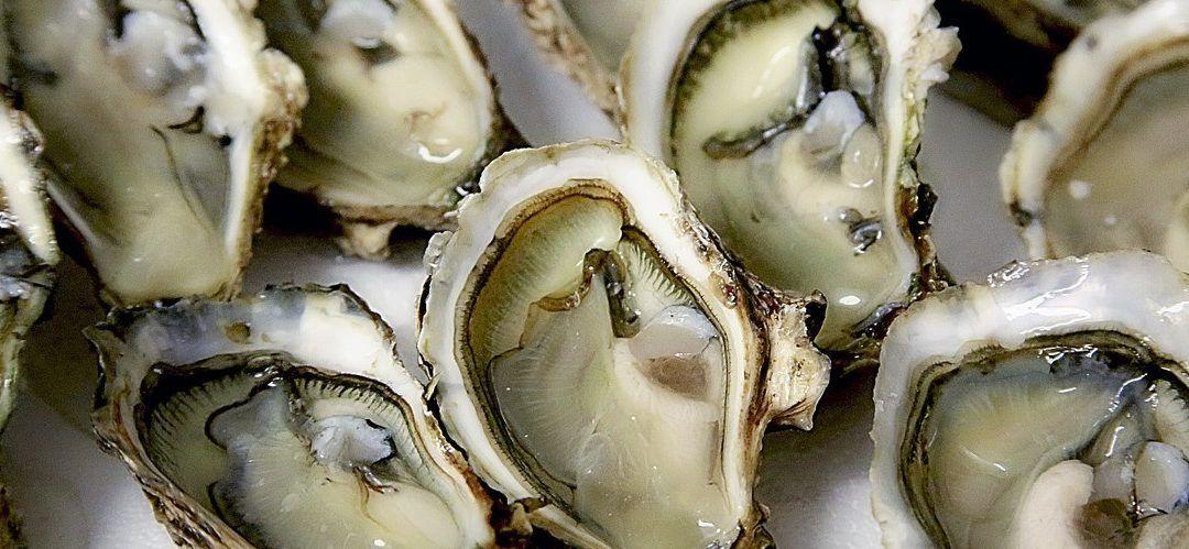 Spécial accords huîtres et blancs doux