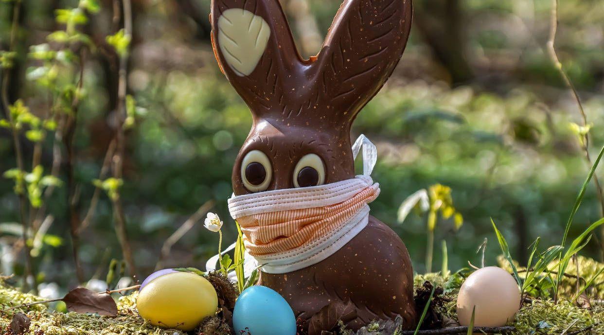 Laure Zago Chocolats Lapins