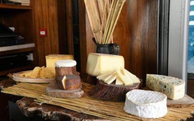 Le vin et le fromage, l'art de vivre à la française